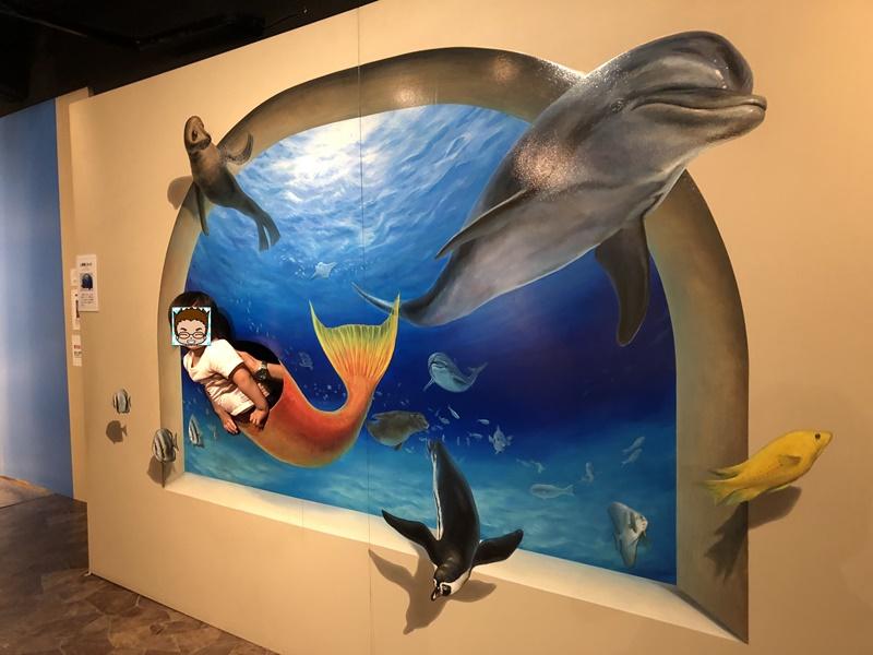 イルカのトリックアート