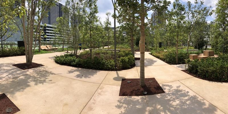 有明ガーデンの植林