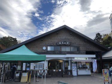 紅葉シーズンの高尾山ベビーカーで登れるスポット紹介!2歳の子供も楽しめた初めての山登りにおすすめの場所!