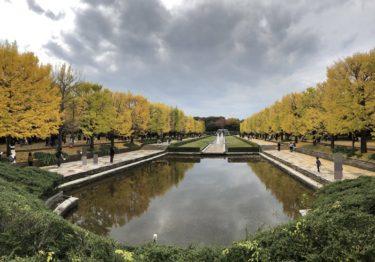 紅葉シーズンで賑わう立川昭和記念公園!子供と楽しめた遊具など紹介!