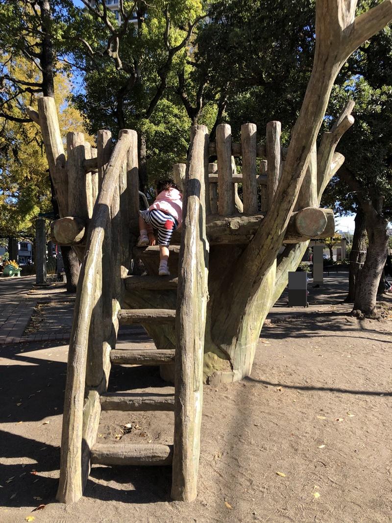 子供の森公園(すべり台)