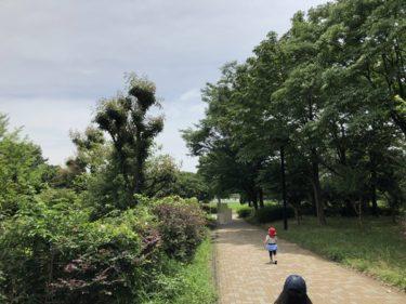 東京江東区の木場公園!4歳、2歳の子供が楽しめた遊具・遊び場スポット紹介!