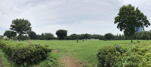 木場公園の広場