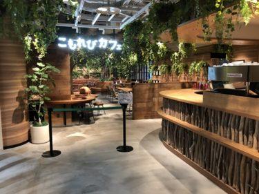 カワスイ川崎水族館こもれびカフェ!子供連れファミリーにおすすめランチスポット!