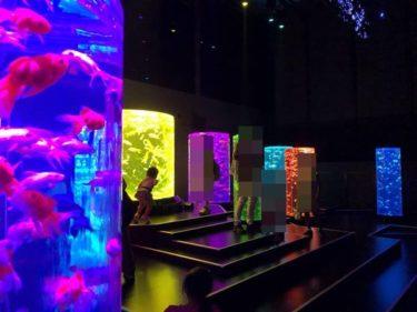 アートアクアリウム日本橋!金魚表現する芸術!小学生以下無料の子供も楽しめる新スポット!
