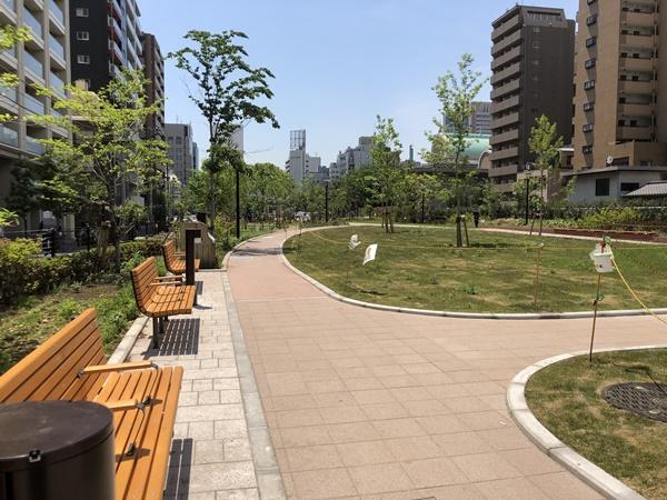 築地川公園内の風景