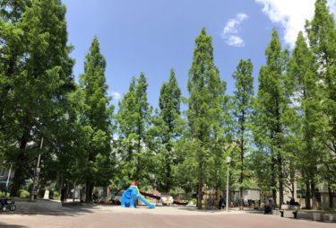 あかつき公園!築地近くのターザンロープもある子供の遊び場!