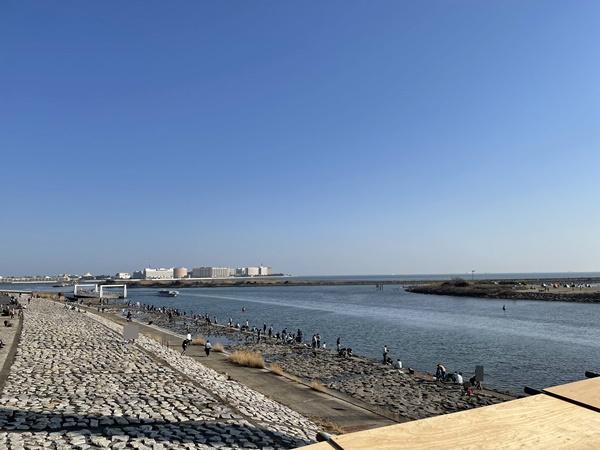 海辺の岩場カニ取りスポット