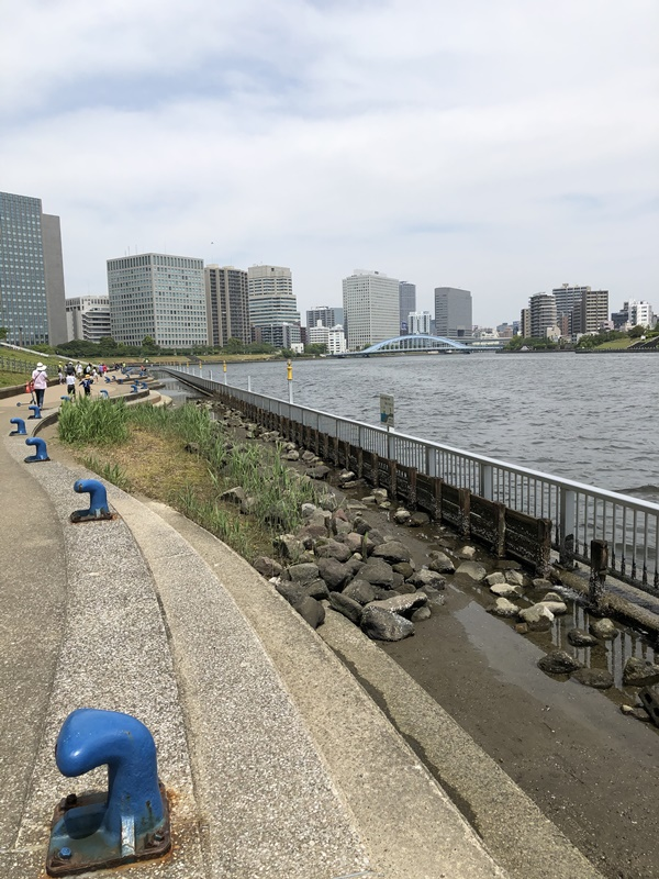 石川島公園からの風景