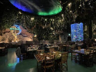 舞浜イクスピアリ子供の誕生日のお祝いができるレインフォレストカフェのバースデーサービス!