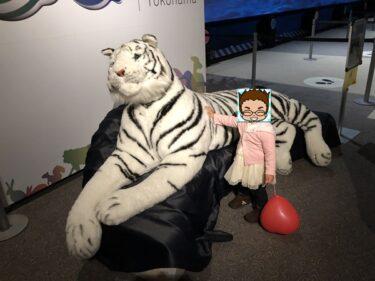 【閉店済】オービィ横浜!みなとみらいで小動物とふれあえる室内テーマパーク!1歳の子供も楽しめたスポット紹介!