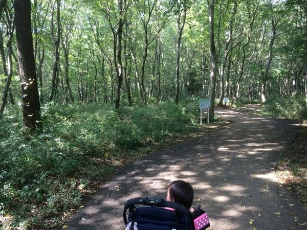 アンデルセン公園自然公園