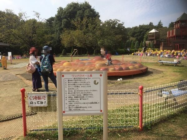 アンデルセン公園わんぱくボール
