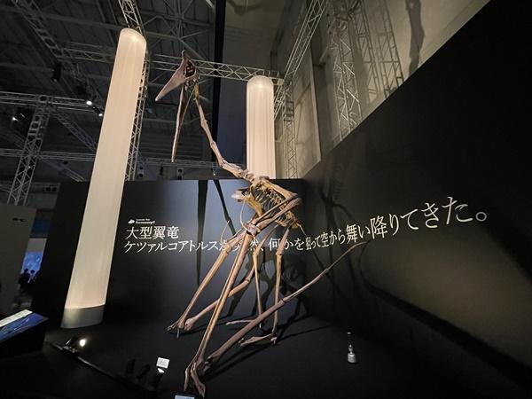 パシフィコ横浜恐竜イベント